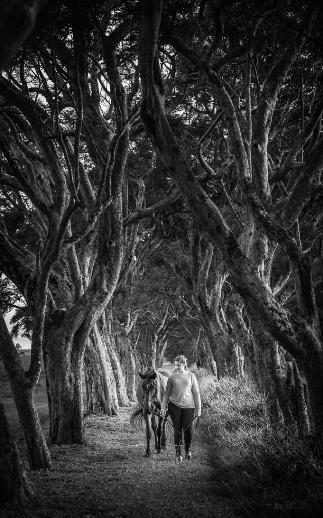 horse and girl walking through trees